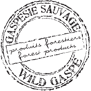 Gaspésie Sauvage, natural and wild forest products